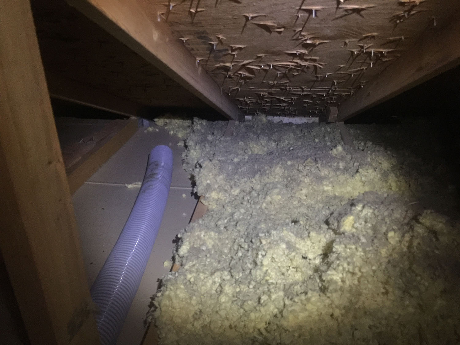 Attic Insulation Removal in Littleton