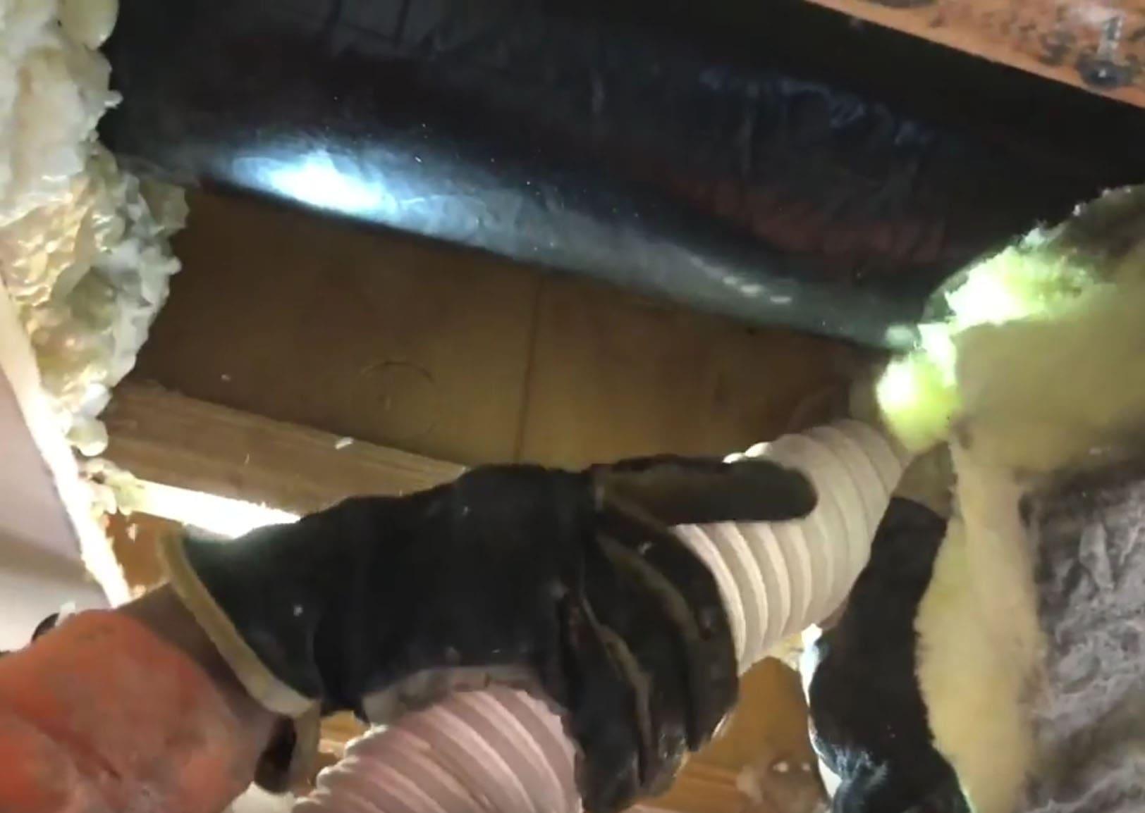 Garage Insulation Services In Denver, CO